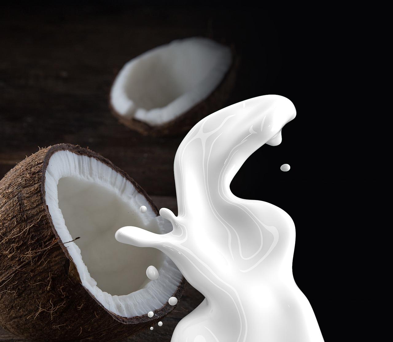coconut-milk non dairy milk